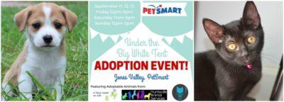 Sept Tent Event 4