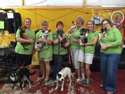 Volunteers holding pups