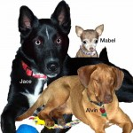 Jace, Alvin and Mabel